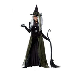 NEW Gothic Witch Women's Halloween Costume